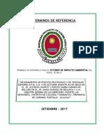 Tdr - Estudio de Impacto Ambiental - Perfil Puentes Acho Mego Bellido y Mercedes