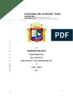 Formato-Borrador-Tesis-2017.-Pilar. (1).doc