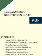 91488239 Curso Taller de Mejoramiento Genetico en Cuyes Www Peru Cuy Com (1)