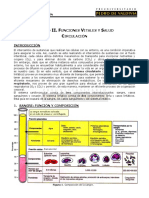 25 Circulacion.pdf