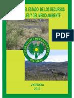 Informe Del Estado de Los Recursos y Del Medio Ambiente Depto Del Meta Vigencia 2013