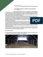 Evaluación Económica de Engorde Porcino en Sistema de Cama Profunda