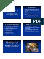 presentacion del libro.pdf