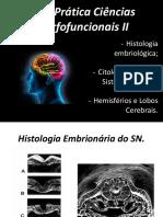 Aula 01 - Prática Ciências Morfofuncionais II