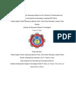 Informe Final Del Proyecto de Investigacion