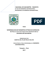 Determinación de Parámetros Óptimos de Obtención de Palillo Fiai - Copia