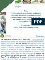 2015 Tesis Elvis Colonio DIAPOSITIVAS.pptx