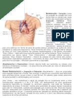 Microsoft Word - Semiologia - Cardiológica