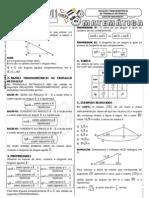 Relacoes Trigonometric As No Triangulo Retangulo
