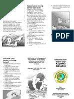 23757718-Kejang-Demam-Leaflet.doc