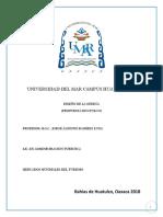 Propuesta Huatulco