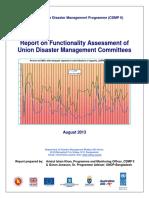 UDMCs Capacity Assessment Report.pdf