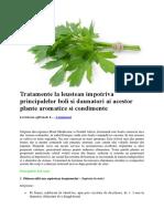 Tratamente La Leustean Impotriva Principalelor Boli Si Daunatori Ai Acestor Plante Aromatice Si Condimente