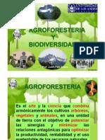 Agroforesteria y Biodiversidad_jpetit