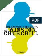 Les Sautes d'Humour de Winston Churchill - Jansen Sabine
