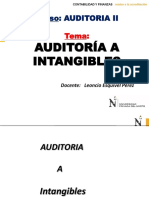 Ok CLASE-Auditoria a Intangibles