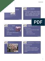 Inspeção Pós-Morte.pdf