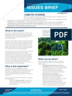 Forests and Climate Change Issues Brief