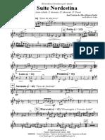 Suite Nordestina - 013 Sax tenor Bb 2.pdf