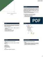 Capitulo II - Montaje y Desmontale Del Equipo
