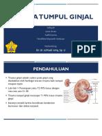 Trauma Tumpul Ginjal Slide(1)