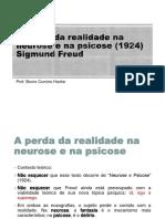A Perda Da Realidade Na Neurose e Psicose (1924) - Slides