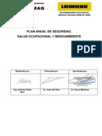 PLAN ANUAL DE SEGURIDAD (1).pdf