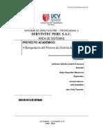 Informe de Practica Pre Profesional II i