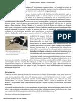 inteligenciaperro.pdf