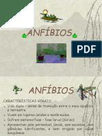 ANFÍBIOS