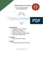 Tribunales Internacionales y Derecho Internacional