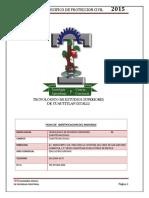 Tesci Programa P_c 2015 Incluyente