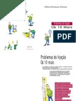 Os_Dez_Mais_Problemas_de_Injecao.pdf