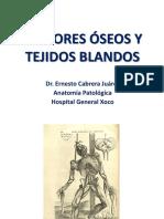 Tumores Óseos y Tejidos Blandos 2018