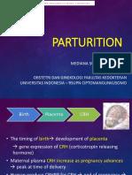 Parturition 150304011910 Conversion Gate01 (1)
