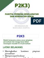 P2K3 Organisation