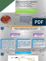 Aditivos Alimentarios Proceso Automatizado