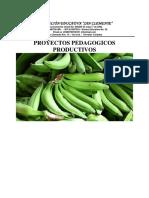 proyect productivo
