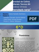 Clinicos h.nana