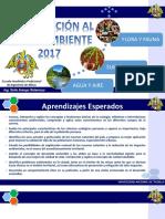 _DIAPOS INTRODUCCIÓN AL MEDIO AMBIENTE.pptx