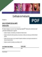 JULIO+CESARESCALANTE+CHOCCATA-Introduction+to+the+-Certificate