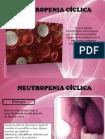 Neutropenia ciclica