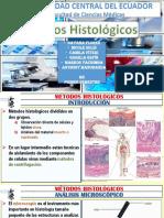 Citologia y Metodos Histologicos.pptx