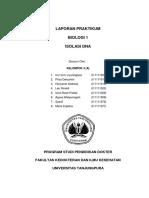 95728598-Laporan-Praktikum-Isolasi-Dna.pdf
