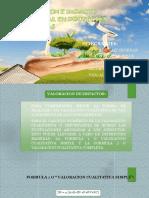 valoracion cualitativa.pptx