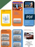 GPPH leaflet..doc