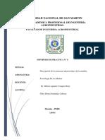 Informe Madera 9