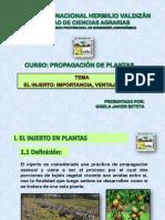 Exposición Injerto (3).pptx