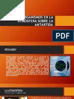 Los Microorganismos Antártida