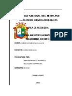 61458802-Maniobra-de-Buques-Informe.docx